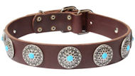 Cane Corsoleather dog collar with blue stones