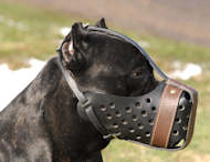 "Leather Dog Muzzle ""Dondi plus"" for Cane Corso"