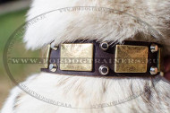Dog Collar with Old Brass Plates for Laika