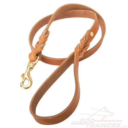 Long-lasting Dog Leash