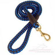 Braided Nylon Leash for Training ➤
