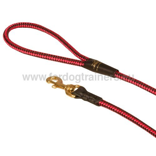Reliable Dog Leash
