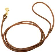 Dog Leash of Soft Leather for Small Dogs | Dog Show Leash ϶