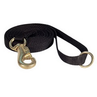 Nylon Dog Leash with Reinforced Snap Hook