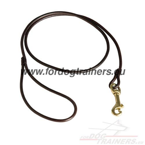 Leash for Dog Show High Quality