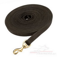 Professional Lead, Long Leather Dog Leash for Large Breeds