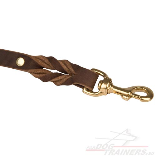 Big Dog