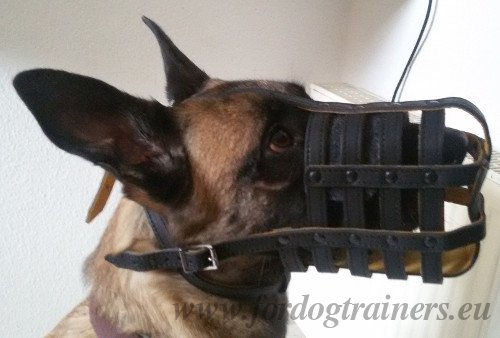Police Dog Leather Basket Muzzle