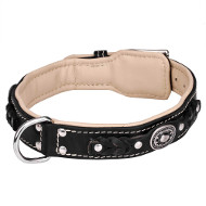 Luxurious Leather Collar Braided with Rivets