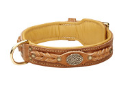 Royal Dog Collar of Tan Genuine Leather