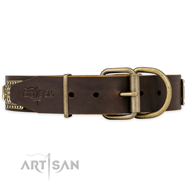 Brown Leather Dog Collar with Brass Hardware