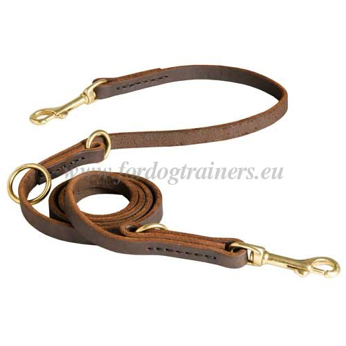 Leather Dog Lead Manufacturers FDT