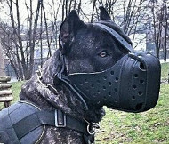 Extra Large Dog Leather Muzzle ❺