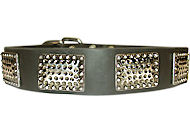Cane Corso Leather Dog Collar With Vintage Plates