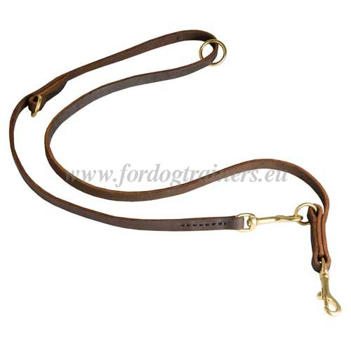 Leather Dog Lead Adjustable for Rottweiler