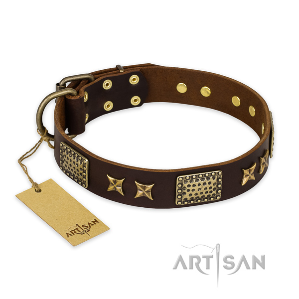 Leather Dog Collar for Walking and Training