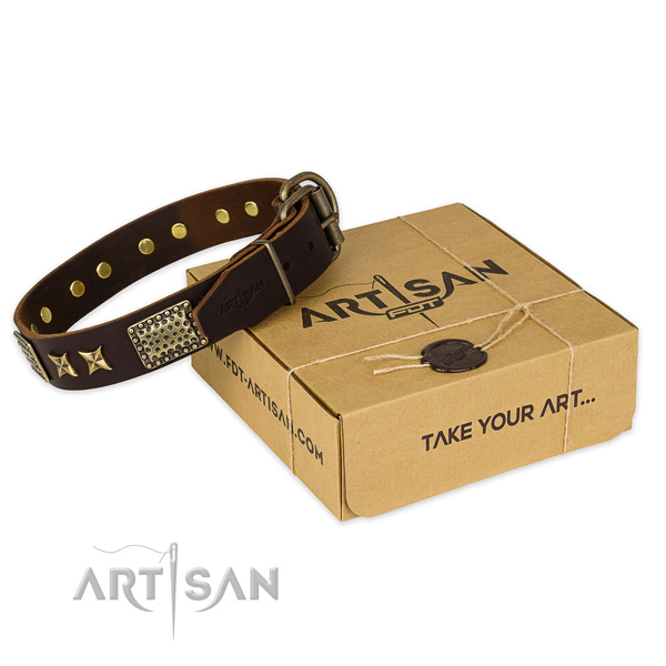 Fordogtrainers Artisan Leather Collar