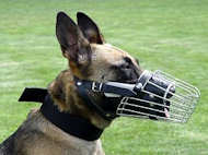Wire Basket Dog Muzzle for Belgian Malinois