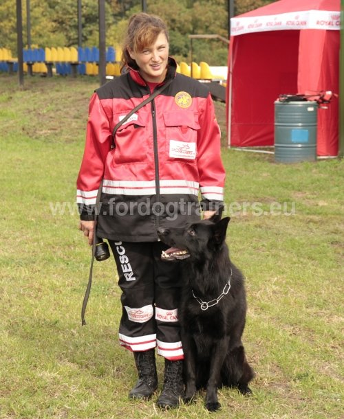 Ring belge chien
