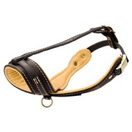 Royal Leather Dog Muzzle with Nappa-Padding