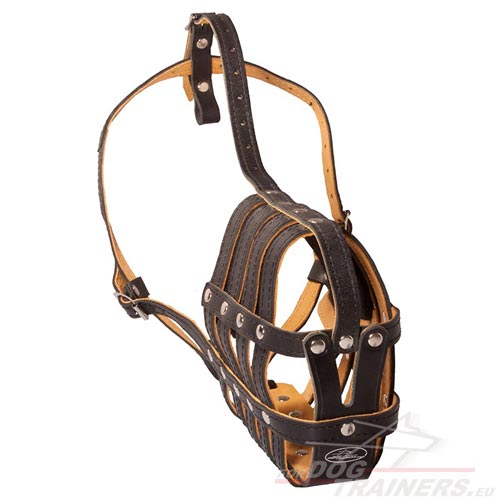 Resistant Leather Dog Muzzle