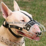 Wire Basket Dog Muzzle for Bull Terrier