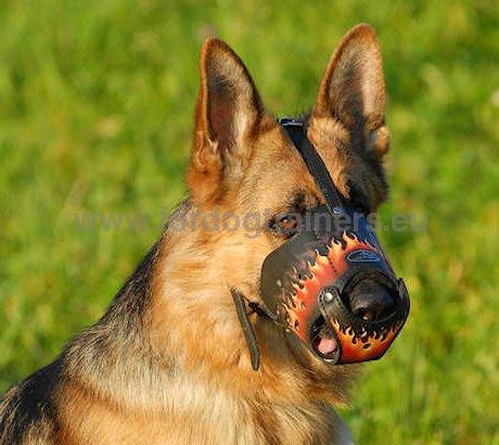 Museli re l gante pour berger allemand museli re cuir - Dessin de chien berger allemand ...