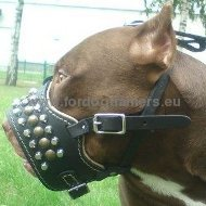 Pitbull Royal Studded Soft Dog Muzzle ◧
