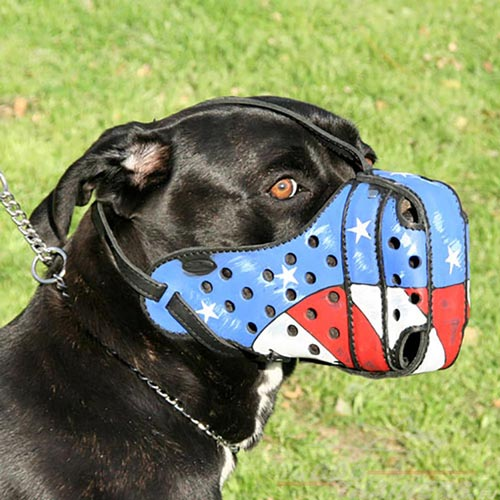 Cane Corso Leather Muzzle with USA Painting