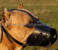 Amstaff Muzzle Leather of High Quality ⚑