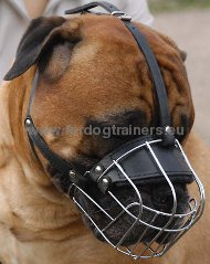 Bullmastiff Wire Basket Dog Muzzle ###