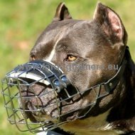Pitbull Wire Basket Muzzle Super Strong ▦