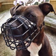 Big Dog Wire Muzzle for Pitbull