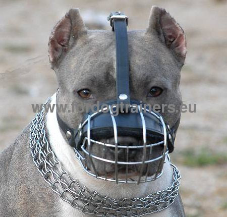 Super Strong Ventilated Dog Muzzle for Pit Bull