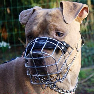 Lightweight Steel Muzzle for Amstaff &#9839