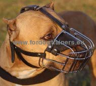 Wire Basket Dog Muzzle for Pitbull ✥