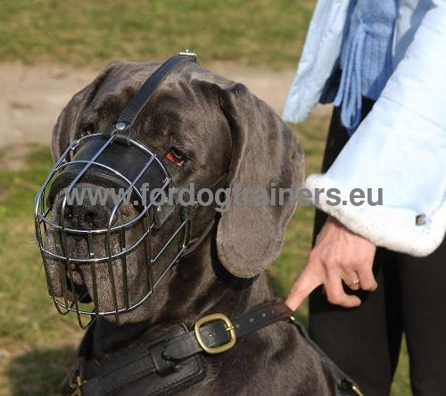 Metal Muzzle for Great Dane