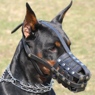Doberman Everyday Light Weight Ventilation Dog muzzle