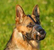 German Shepherd Art Leather Muzzle Barbed Wire