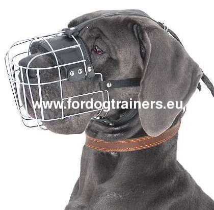 Everyday Metal Dog Muzzle for