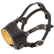 Leather Muzzle