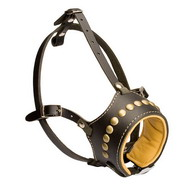 Best Decorated Leather Dog Muzzle