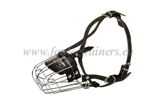 Wire Basket Dog Muzzle For American Bulldog M4 1057