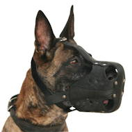 New Leather Working Muzzle for Malinois Optimum Ventilation