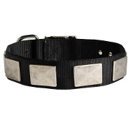 Nylon Collar with Plates Tear-resistant ▩