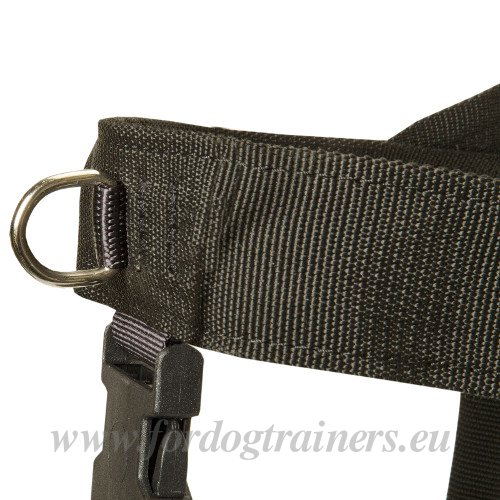 Dog Harness Weight Pulling with Rings