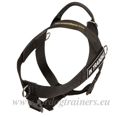 Dog Harness with Handle on Top for Training