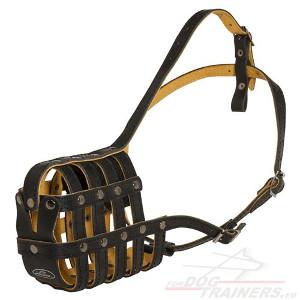 Leather Dog Muzzle with Padding