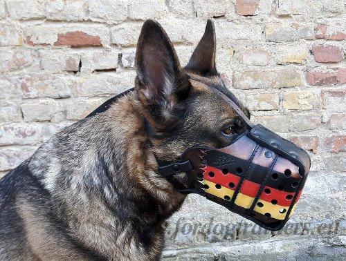 Service Dog Painted Leather Muzzle