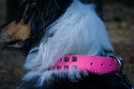 Pink Leather Collie Collar with Studs